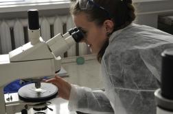 Laborkaland - vizsgálat mikroszkóppal 2 fotó Lovász Csaba